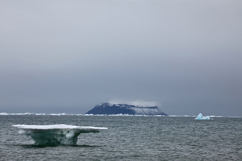 As we leave Snow Hill bound for Devil's Island, we'll start passing many more icebergs.  It's amazing how different each iceberg looks, each as unique as a fingerprint.