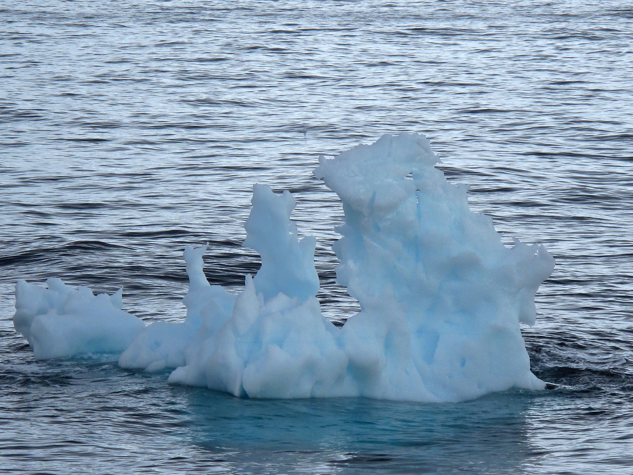 """When an iceberg melts, it makes a fizzing sound called """"Bergie Seltzer."""" This sound is made when compressed air bubbles trapped in the iceberg pop. The bubbles come from air trapped in snow layers that later become glacial ice."""