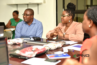 PIND's Fields Project Manager Sylvester Okoh and Advocacy for Niger Delta Development Program Manager Ese Emerhi listening to a participants contribution at the session