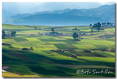 CUSCO 1DX 120115-1827