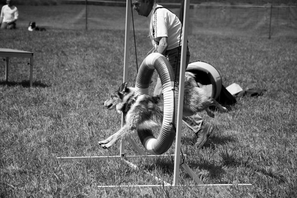 Dog Days of Summer 2010_KDS7755 bw