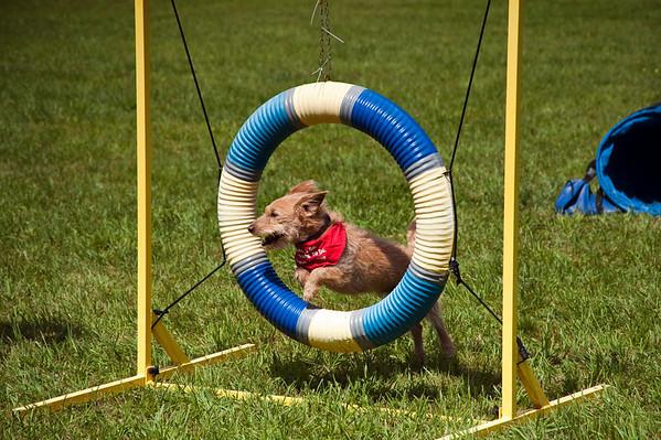 Dog Days of Summer 2010_KDS7778