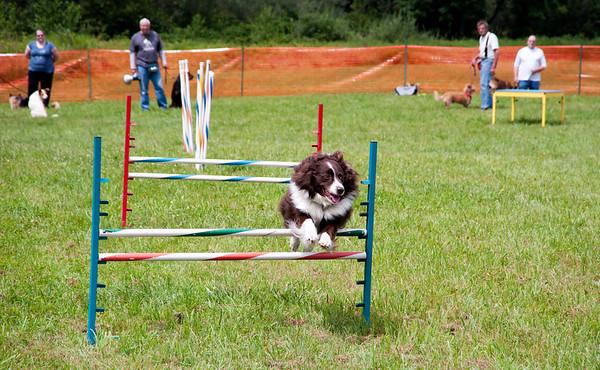 Dog Days of Summer 2010_KDS7635