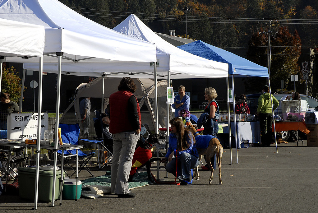 Earth Pet Wellness Festival - Issaquah, WA  10/13/2007