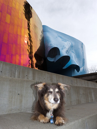 Elliot @ Experience Music Project, Seattle  3/2012