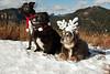 Christmas in the Cascades - Xmas 2011