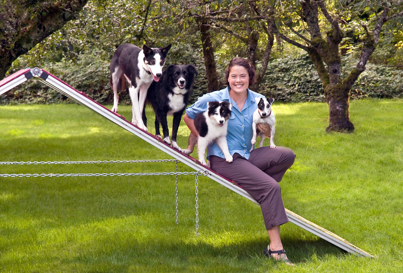 Taiko, Osa, Buoy, Ali & Toshi - Kinship Dog Training