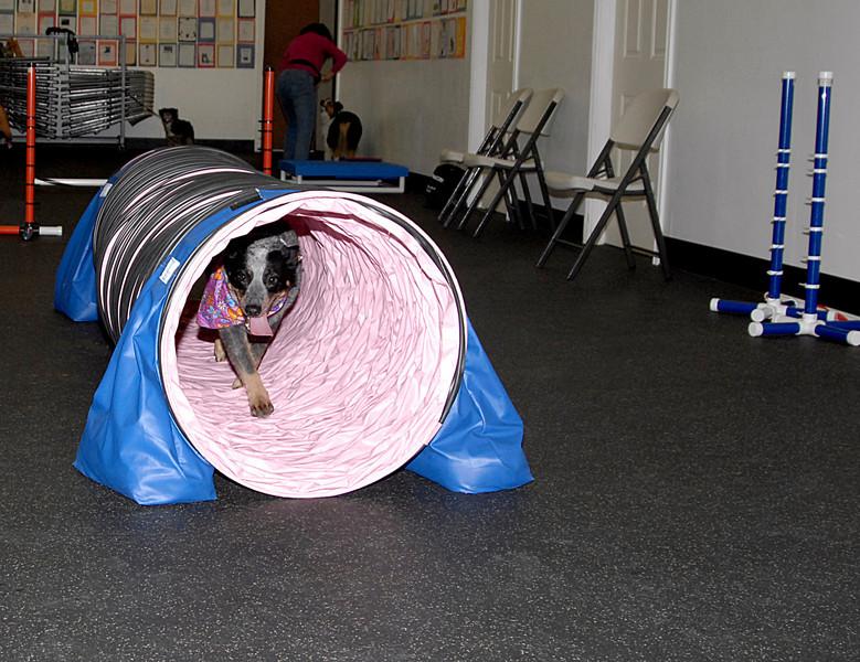 Ursa coming through tunnel 3-3-2008