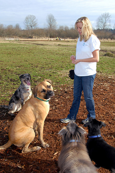 waiting for instruction-Amanda with Foggy, Benny, Elliot & Ollie 2-14-2008