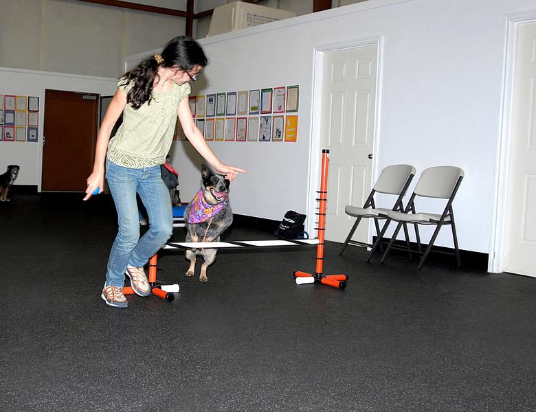 Rachel guiding Ursa over a jump 3-3-2008