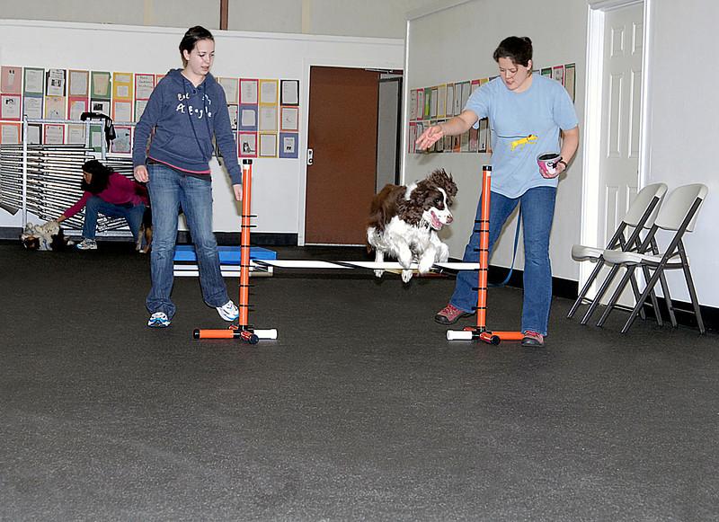 Ally levitating Spaniel 3-3-2008