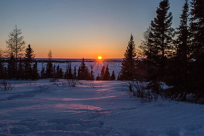 Dawn at Wapusk National Park