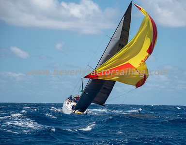 Antigua Race Week 2019 - Race Day 2_3972