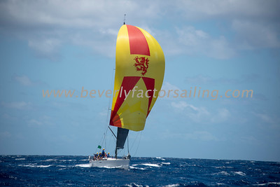 Antigua Race Week 2019 - Race Day 2_3979