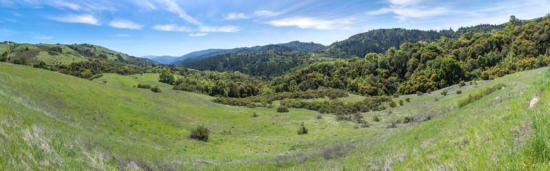 Vw down Stevens Creek Canyon (6 shot pano)