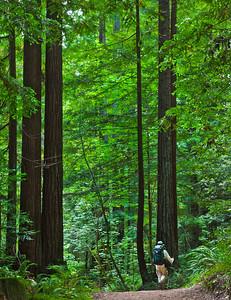 Dee on Harkins Ridge Trail
