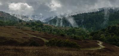 A Break Between Storms, Nature Trail, Montebello OSP