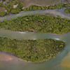 Orthophoto - mangroves in Pumicestone Passage - area = 9ha.<br /> Original image size = 19900 x 10400 pixels