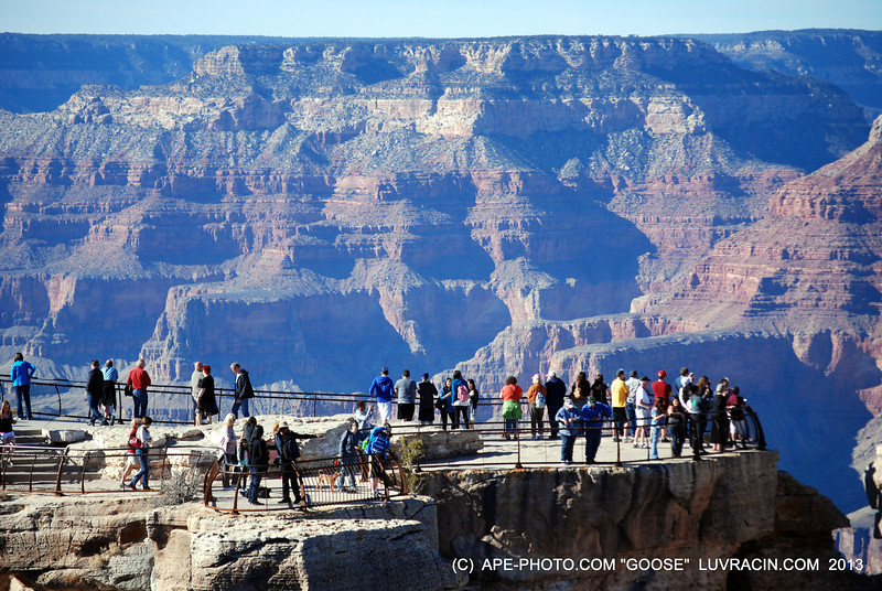 THE GREAT CANYON .