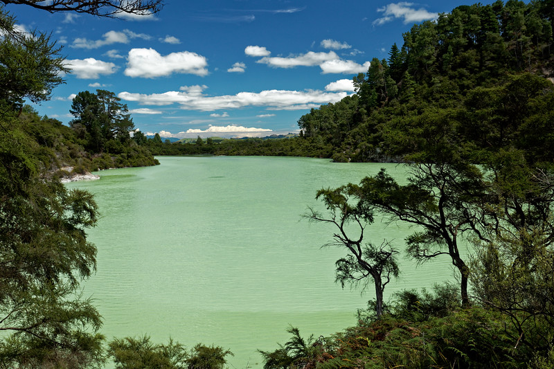 Lake Ngakoro at Wai-O-Tapu Thermal Wonderland