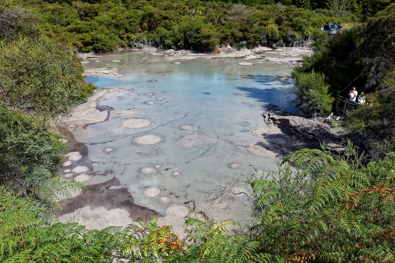 Mud pools at  Wai-O-Tapu Thermal Wonderland