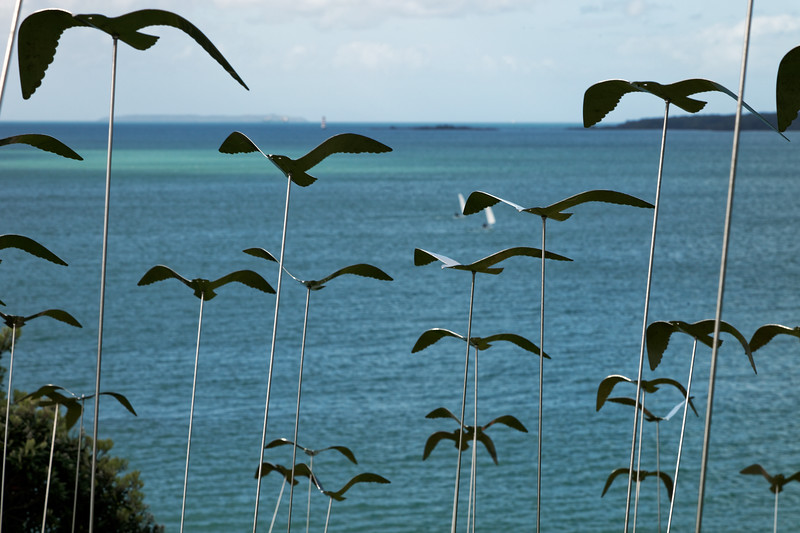 Peter's Seagulls by Sue Bancroft