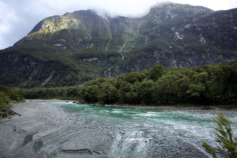 Cleddau River, Milford Sound, Fiordland National Park