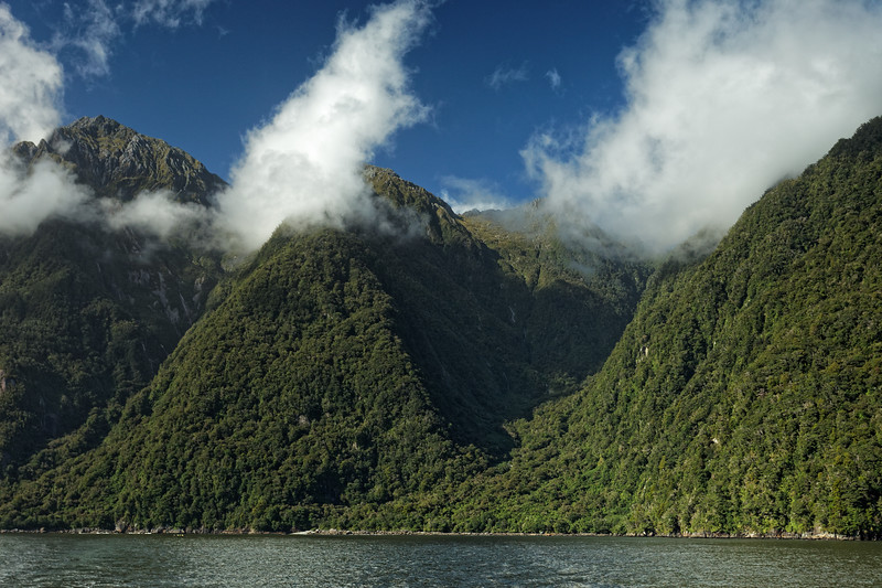Forested mountains at seaward entrance of  Milford Sound in Fiordland National Park
