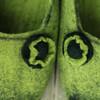"""""""Green greetings"""""""