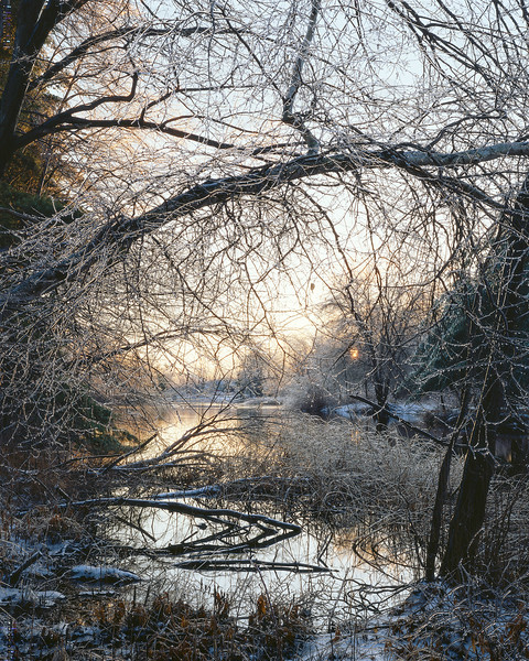 Ice Storm At Sunrise, Sudbury River