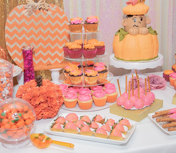 Karis' Baby Shower-4