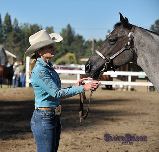 AQHA of SCV Breeders Show/ 2012/ #251-350