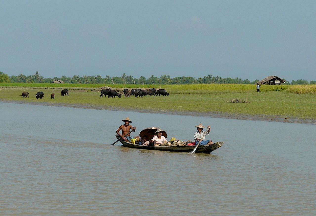 Burma-Kaladan River 238