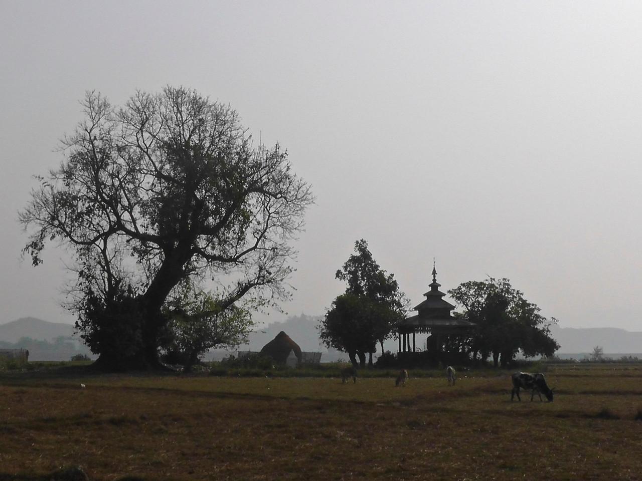 Burma-Arakan-Lemro River 264