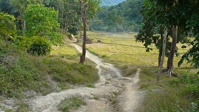 Pantwapyin Village 3