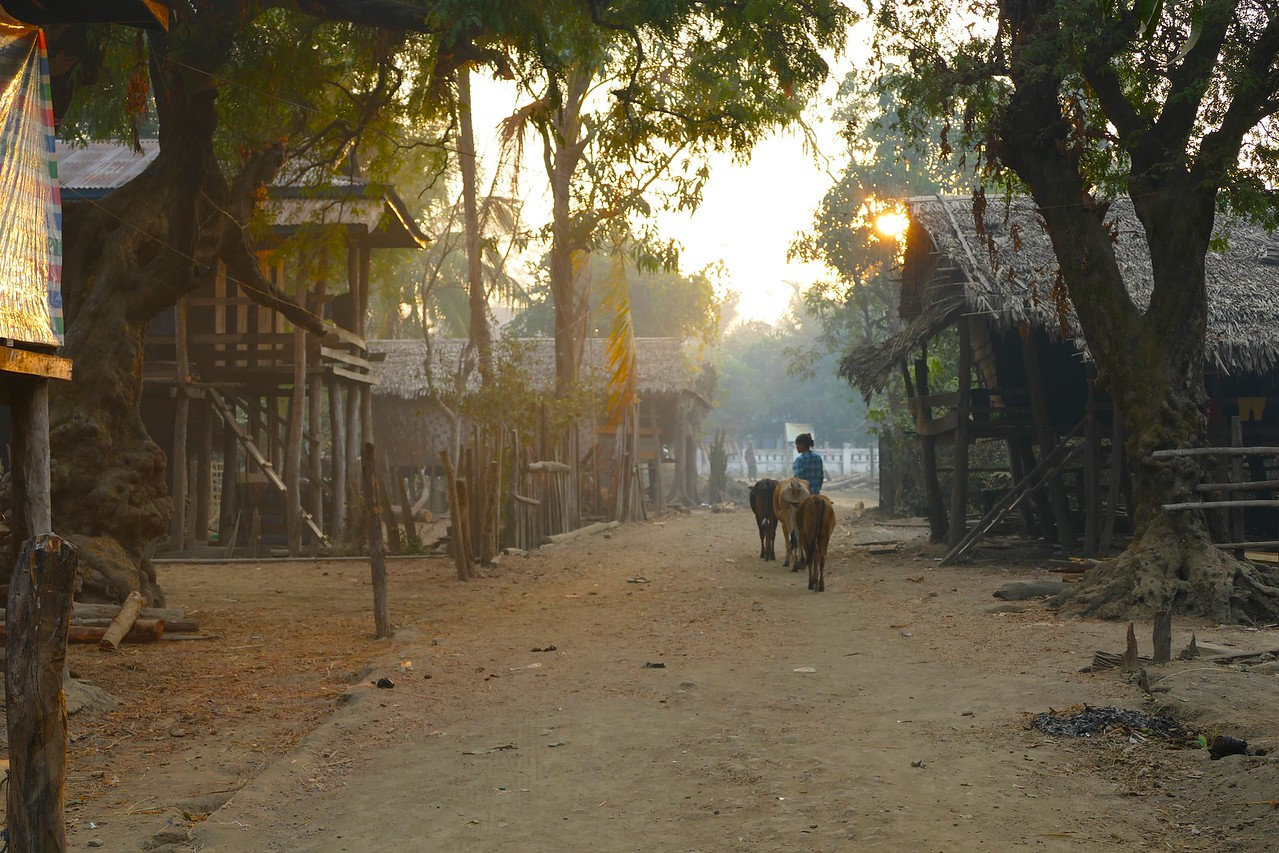 Pantwapyin Village 15