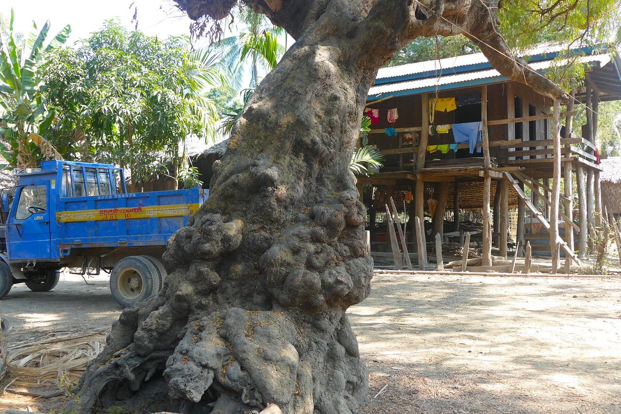 Pantwapyin Village 16