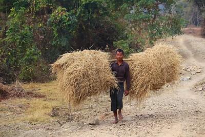 Pantwapyin Village 4