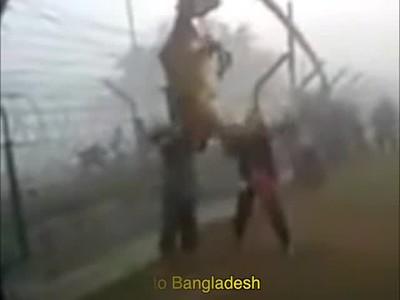 Muslims Smuggle Cows