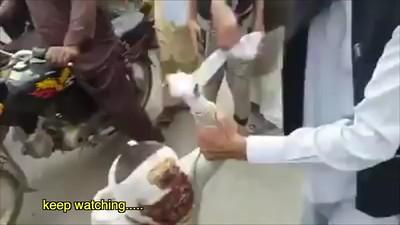 Bandaged Muslim Boy