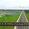 George Park 2