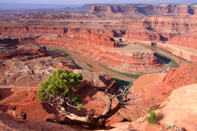 Colorado River from Dead Horse Point
