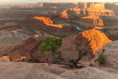 DEAD HORSE POINT, CANYONLANDS NATL PARK SUNRISE