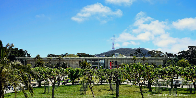 The Academy of Sciences building is low and unassuming structure directly across the de Young Art Museum with the sunken Music Concourse in between the two structures.