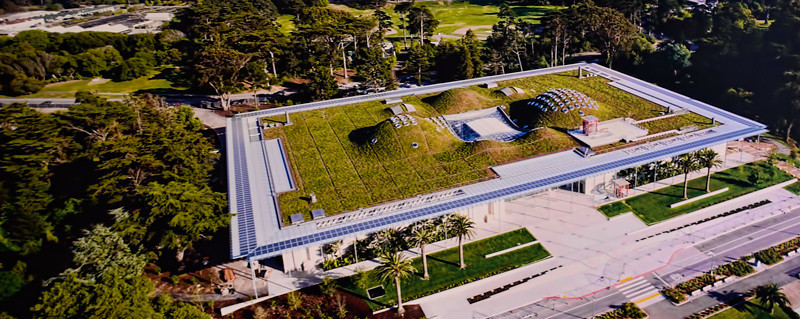 CALIFORNIA ACADEMY OF SCIENCES, SAN FRANCISCO, CALIFORNIA