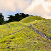"""The """"Living Roof"""" also has its security camera. The lines shwon on the sod are drainage strips of gravel. The roof goes well with the lush deep green trees that sorrounds the building."""