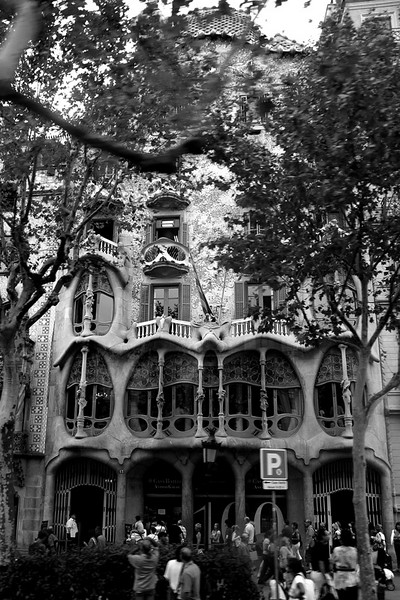 Casa Batllo is so hard to take a picture off because of the trees in front and the street it faces is a very busy one. The queue line for the tour inside is too long, approximately an hour's wait. I decided not to see the inside.