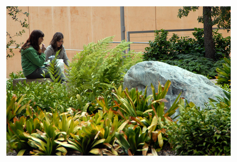 Two women are enjoying their lunch at thelandscape courtyard garden between the cathedral and the Hollywood Freeway.