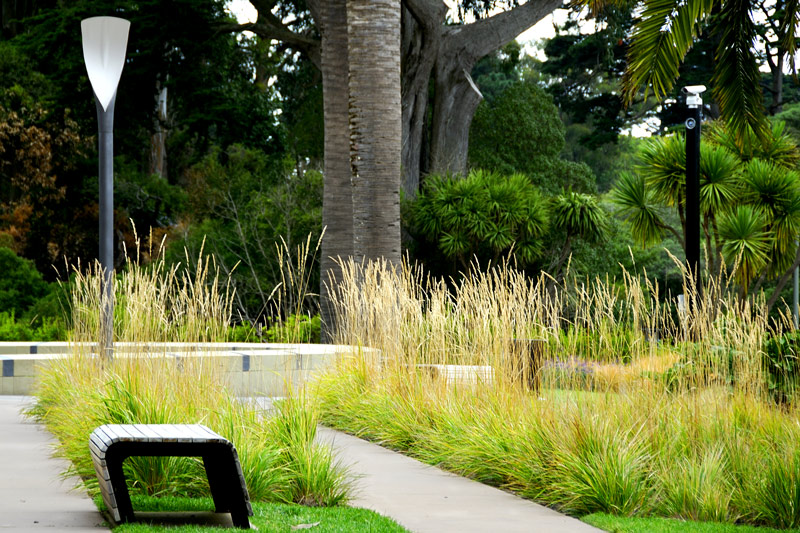 The pampas grass landscaping at front.