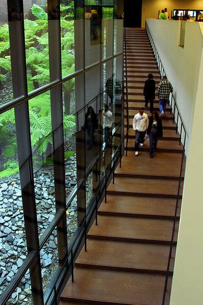 Stairway by fern court.